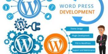 website-designing-in-yamunanagar